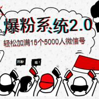王双雄内部《爆粉系统2.0》,轻松加满15个5000人微信号,实现月入10万元+(完结)
