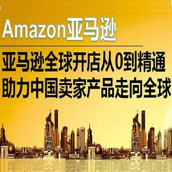 亚马逊跨境电商全球开店VIP实操, 跨境电商VIP实操课程