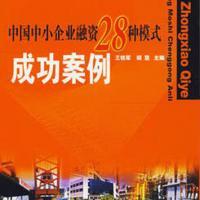 中国中小企业融资28种模式成功案例,助你取得融资实践的成功
