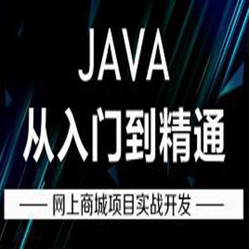 Java零基础入门到网上商城项目实战开发精讲